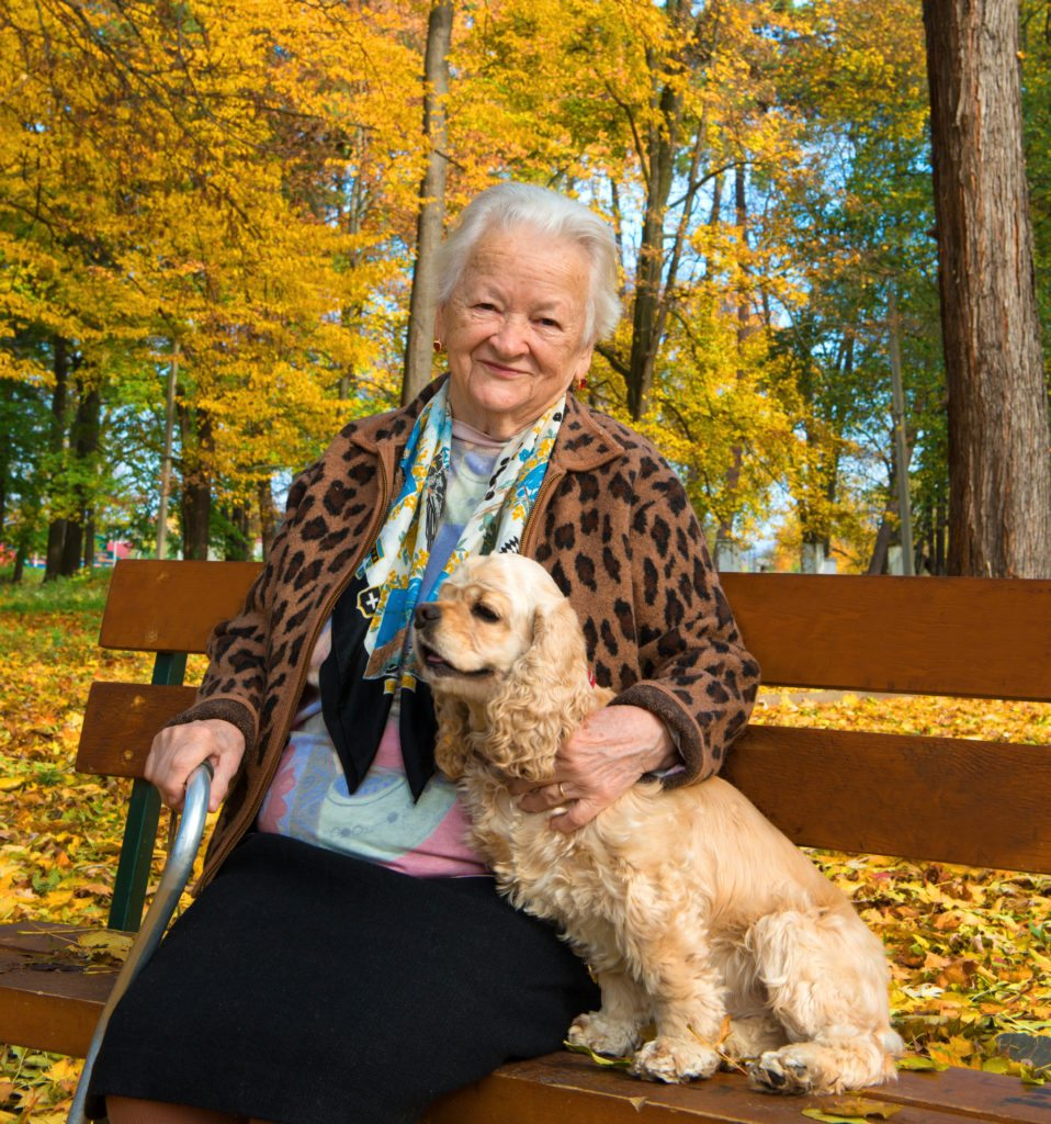 Lifestyle_Stock_Woman_Dog_Park_Fall_57392115